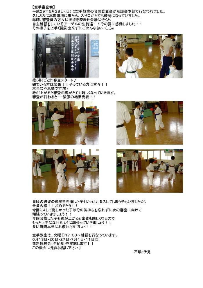 審査会ブログH29春.jpg