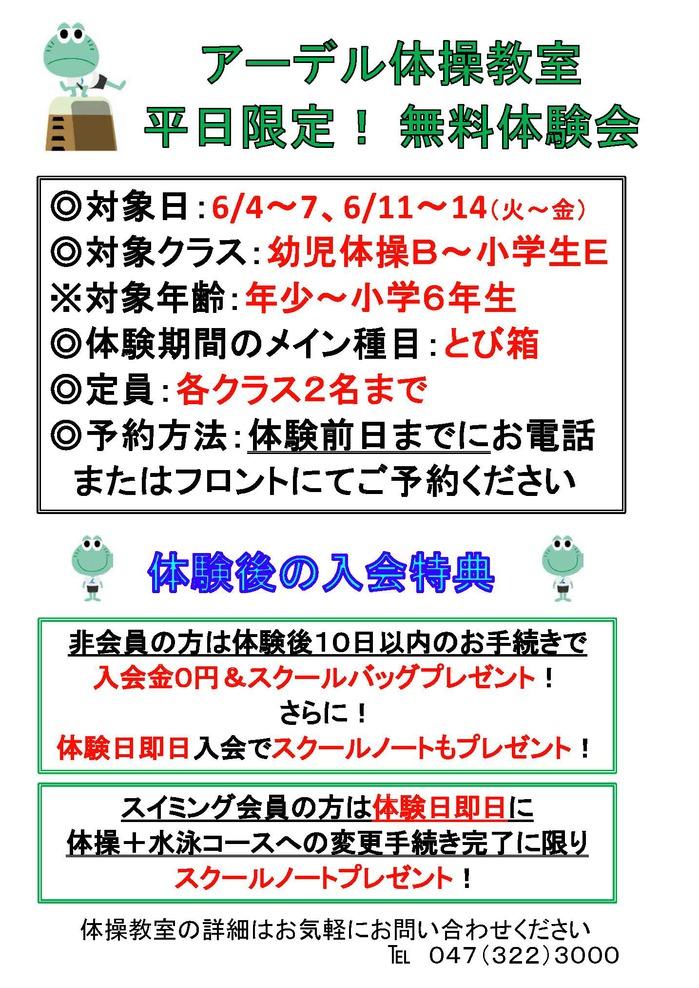 2019.6無料体験会HP用_ページ_1.jpg